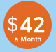 42dollars-a-month